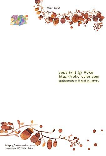 〒Roko-168 どんぐり