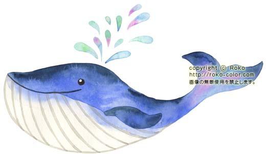 くじら | クジラのイラスト : こども 教材 : すべての講義